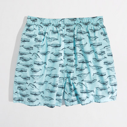 Factory whale boxers