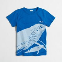 Boys' whale and diver storybook t-SHIRT