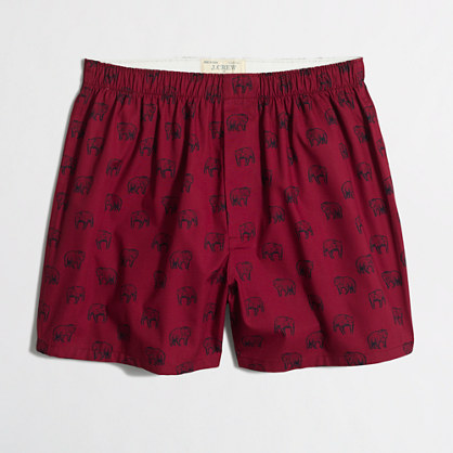 Grizzly bear boxers