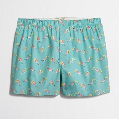 Toucan boxers