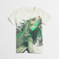 Boys' iguana storybook t-SHIRT