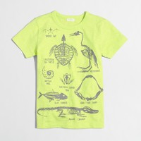 Boys' glow-in-the-dark skeleton storybook T-shirt
