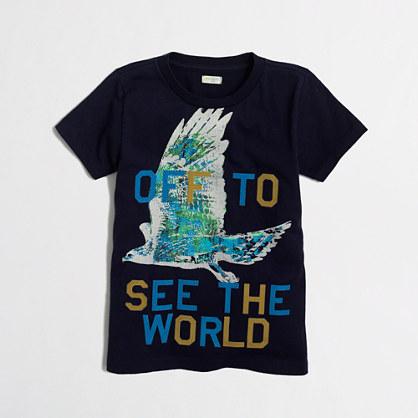 Boys' hawk storybook T-shirt