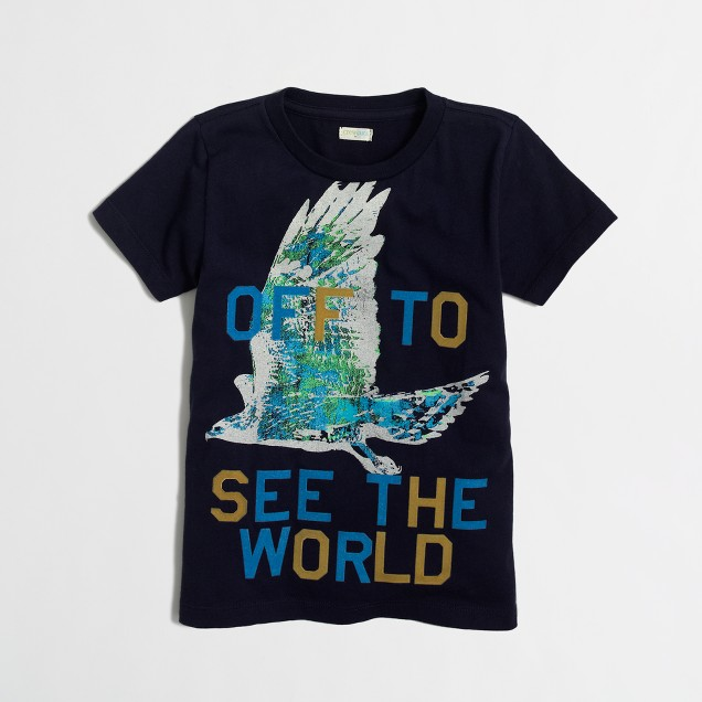 Boys' hawk storybook T-shirt