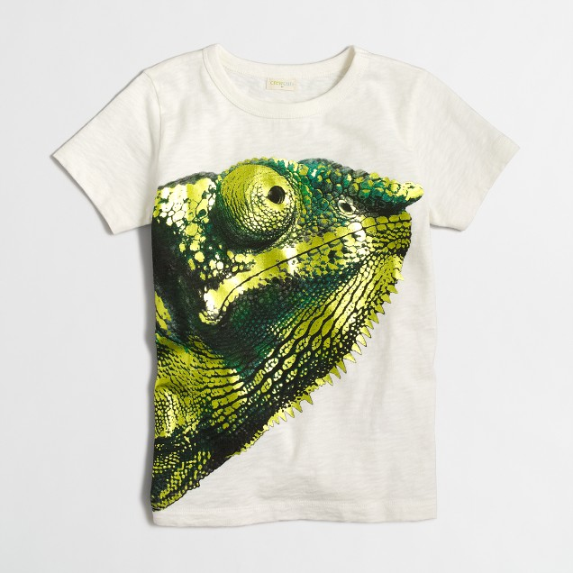 Boys' chameleon storybook T-shirt