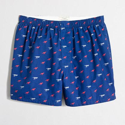 Dinosaur boxers