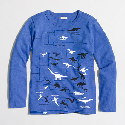 Boys' long-sleeve glow-in-the-dark dino chart storybook T-shirt