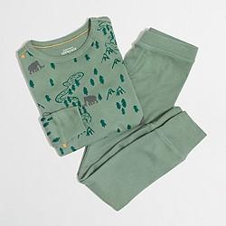 Boys' dinosaurs pajama set