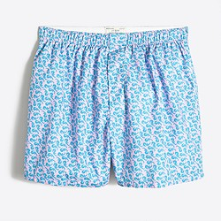 Sea horse boxers