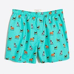 Smoking dog boxers