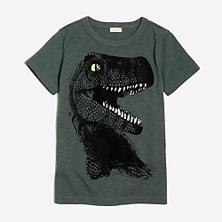 Boys' glow-in-the-dark T.rex storybook T-shirt