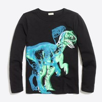 Boys' long-sleeve glow-in-the-dark dino storybook T-shirt